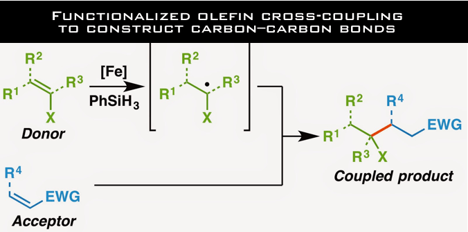 Cross-coupling of functionalized olefins