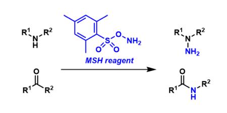 MSH Reagent
