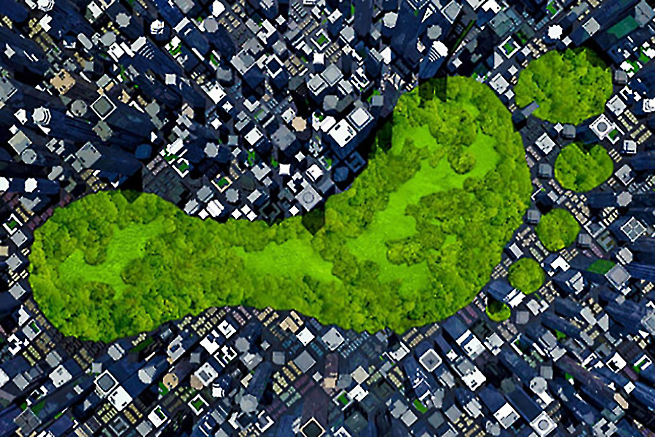 How To Calculate And Reduce Your Business S Carbon Footprint