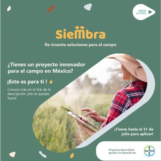 Entrepreneurs are sought to help improve the quality of life of farmers in Mexico 3