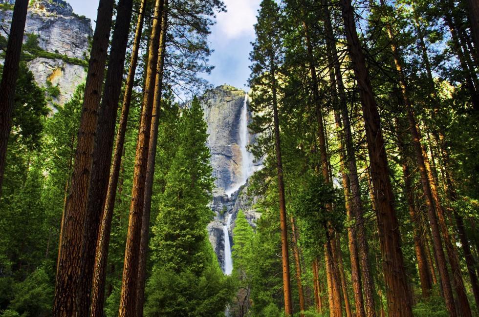 Yosemite Honeymoon Ideas