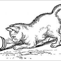 kitten coloring book