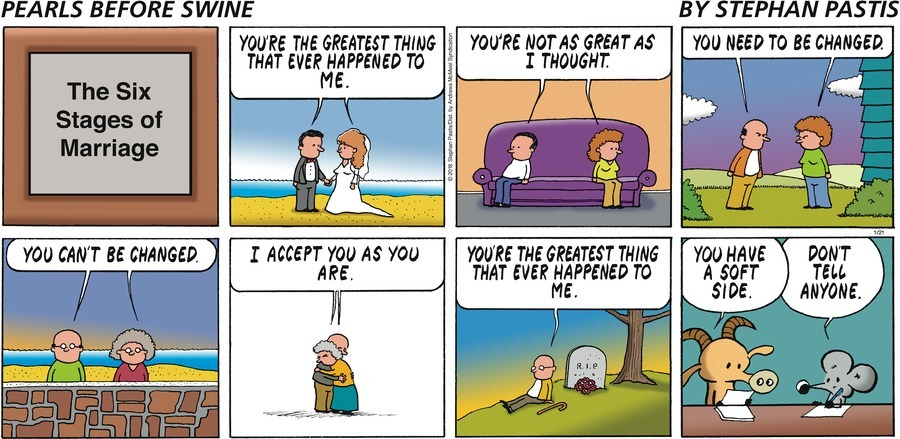 Image result for pearls before swine images marriage
