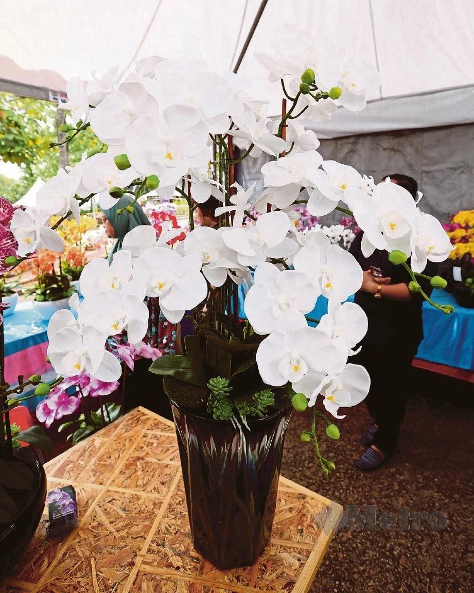 Gubahan Bunga Orkid Pasu Tinggi