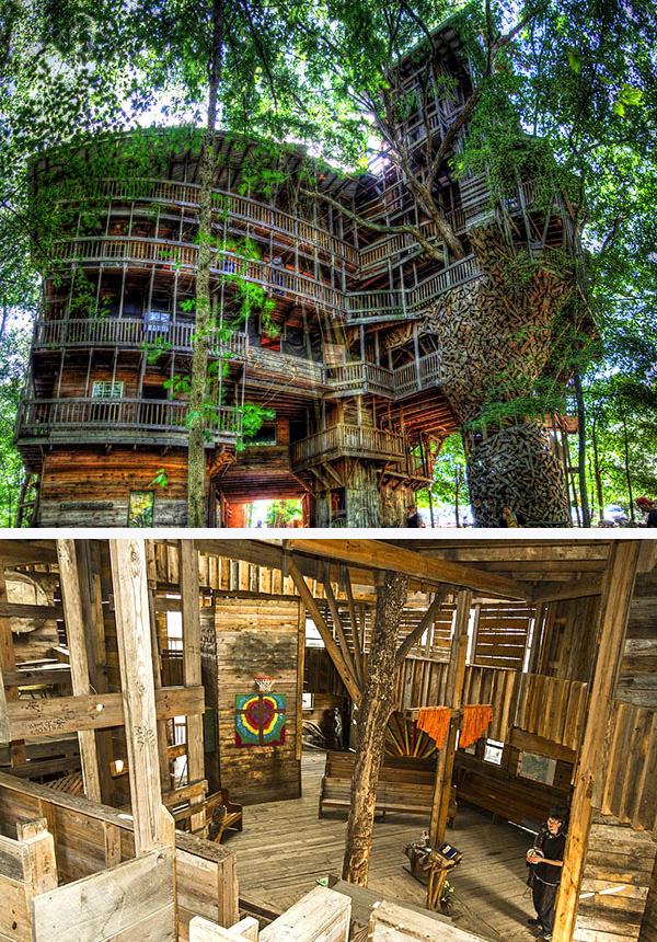 Самый большой в мире дом на дереве Горация Берджесса