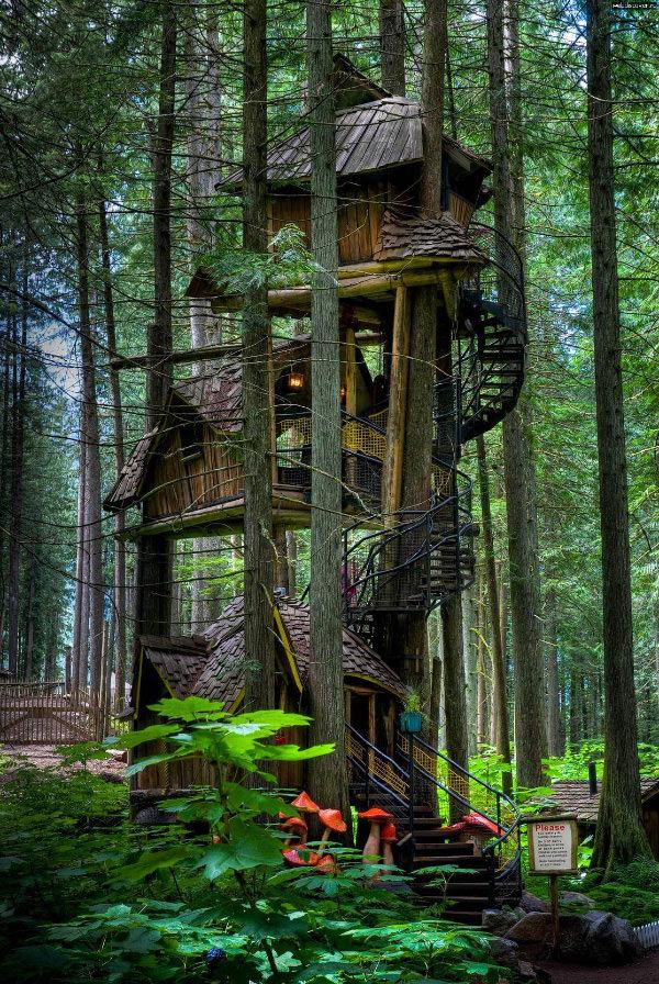 Зачарованный лесной домик на дереве