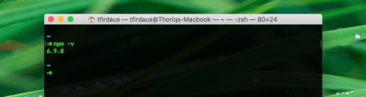 NPM version 6.9.0 shown in macOS Terminal application