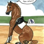 13 Dressage Funnies Horse Nation