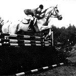 Show Jumper Nautical To Be Inducted Into Palomino Hall Of Fame Horse Nation