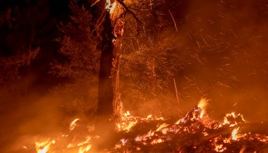 Facebook says it'll REMOVE all posts alleging Oregon fires 'were started by certain groups'