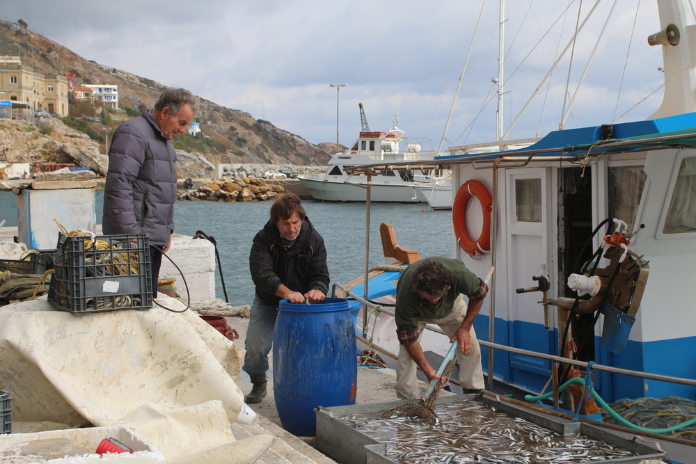 Fisherman Nikos Avayannis (centre) salts sardines for bait.