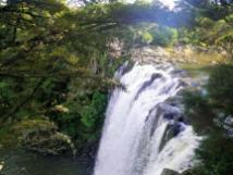 kerikeri-rainbow-falls-top