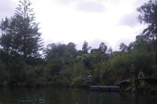 Kerikeri River 5 flying fox