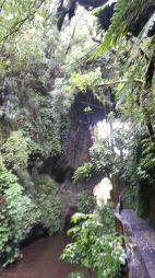 03-mangapohue-natural-bridge