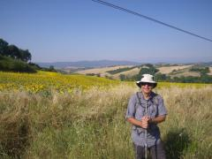 Buonconvento-to-Montalcino-1
