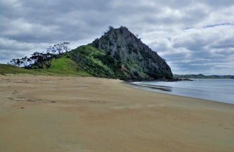01-Pataua-Treasure-Island-Beach