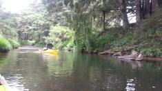 08-Horahora-River