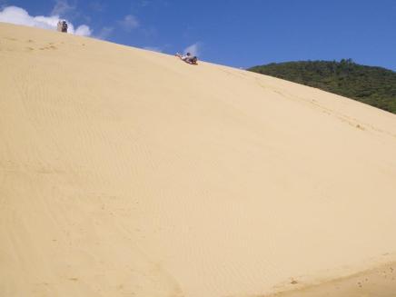 Opononi-Dunes-1