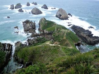 Catlins-Nugget-Point