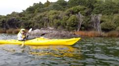 Lake-Manapouri-4