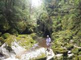 Cave Creek 2