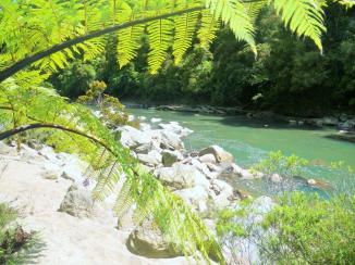 Charming Creek 10