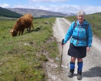 Crianlarich to Bridge of Orchy 8