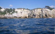 Hauhei to Hot water beach 8