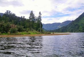 Lake Kaniere 4