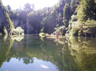 Mangakino Creek reflections 2