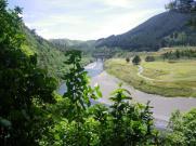 Manuwatu Gorge campsite