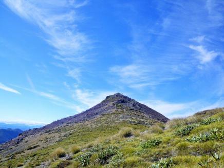 Richmond Range D4 Purple Top climb