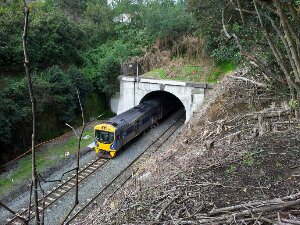 Why can't we use the Parnell tunnel