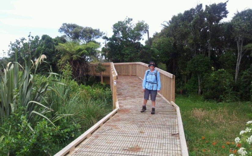 Lower Puhinui Creek walkway