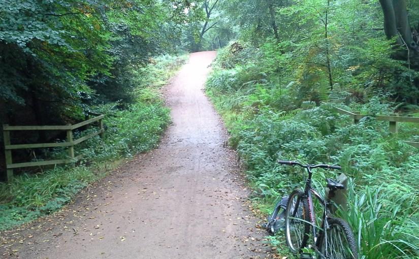 Loughton to Buckhurst Hill via Epping Forest