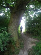 wpid-Moat-Mount-to-Hampstead-Heath-1.jpg