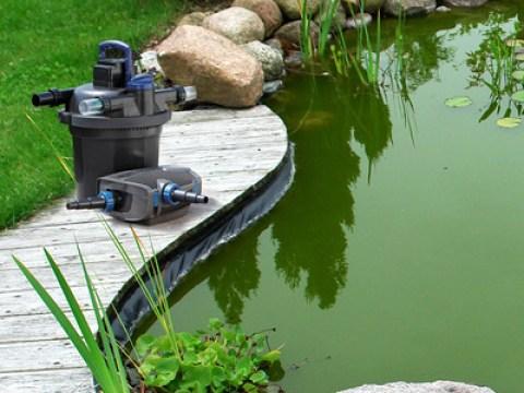oase teich oase living water für belebendes, frisches wasser   oase