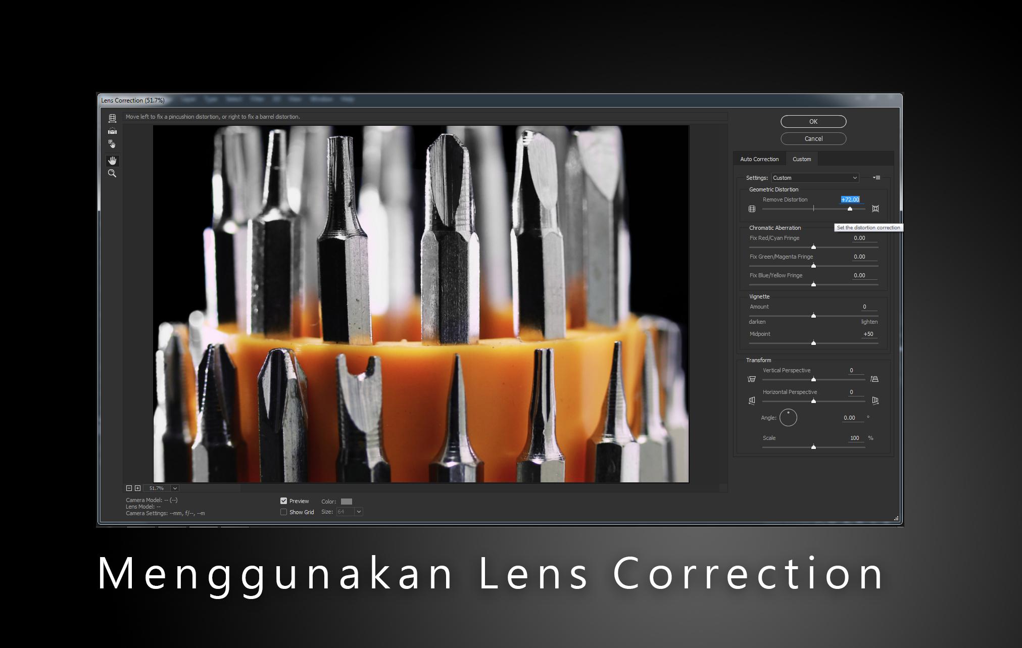 Menggunakan Lens Correction