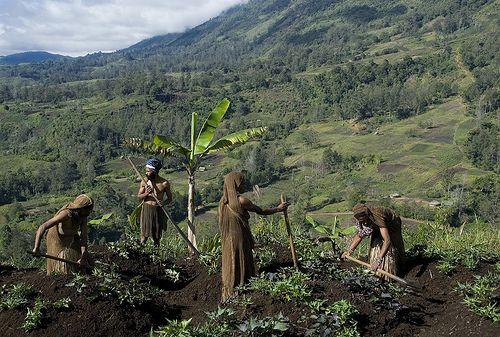 Orang Papua dari dataran tinggi di PNG. Photo: s-media-cache-ak0.pinimg.com