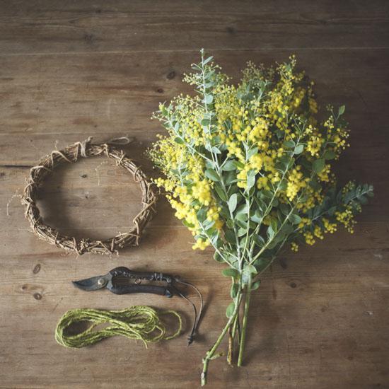 dryflower_051