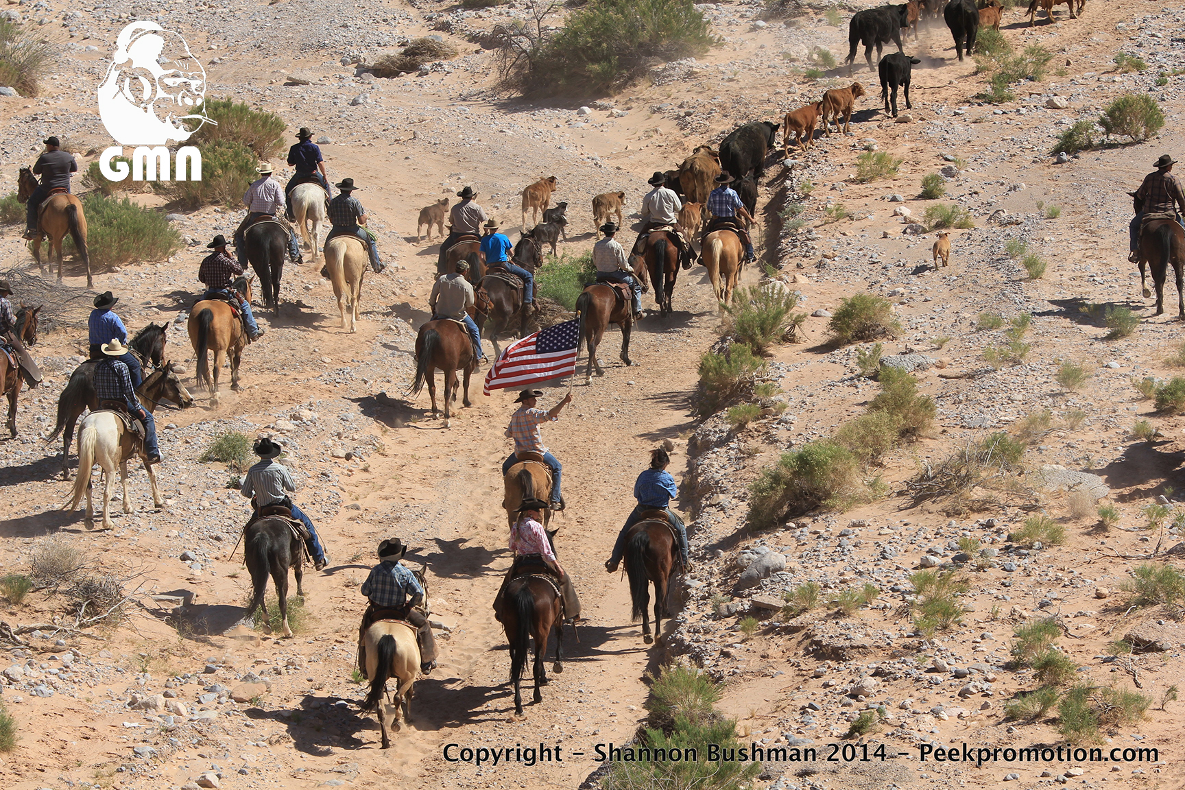 21WIREz3-Bundy-Fed-Standoff-April-12-2014-Copyright-GMN