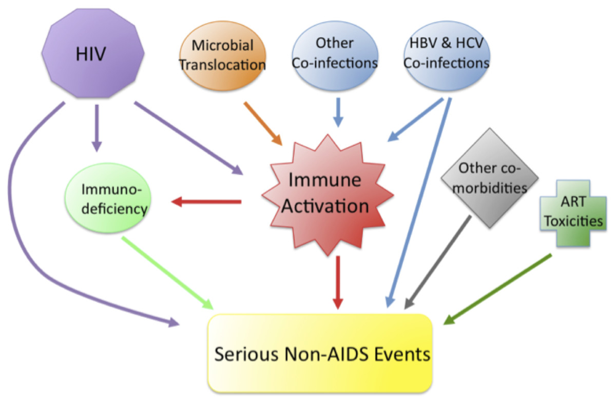 Causes Of Hiv