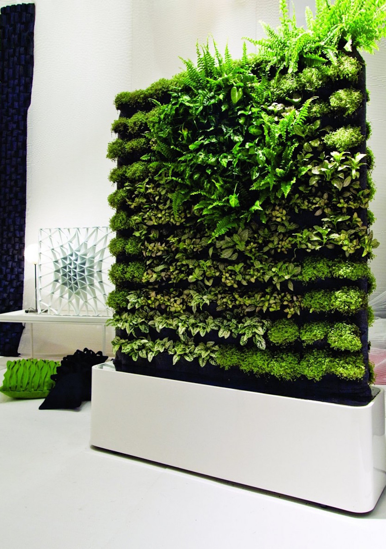 Moss Wall Art Isnt Just Pretty Its Good For You Too