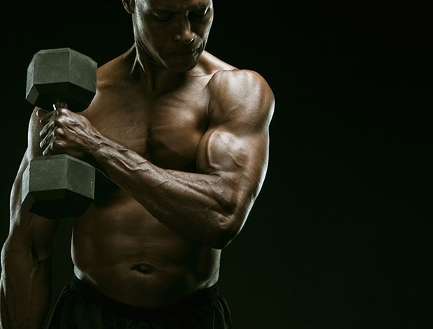 Bulk Way Best Muscle