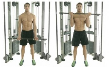 Image result for Biceps Curl via Cable Tower