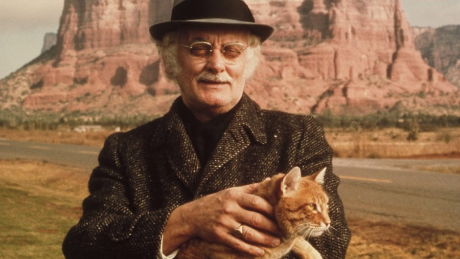 Image result for art carney harry and tonto