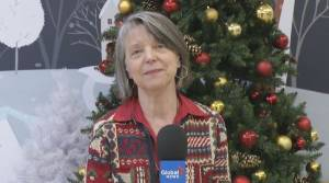 Peterborough's Medical Officer of Health says the region won't revert to green zone before Christmas (04:43)