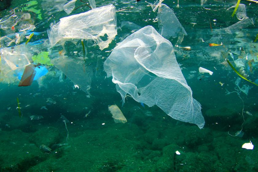 Plastic Pollution Solutions - 10 Ways to Reduce Plastic Pollution | NRDC