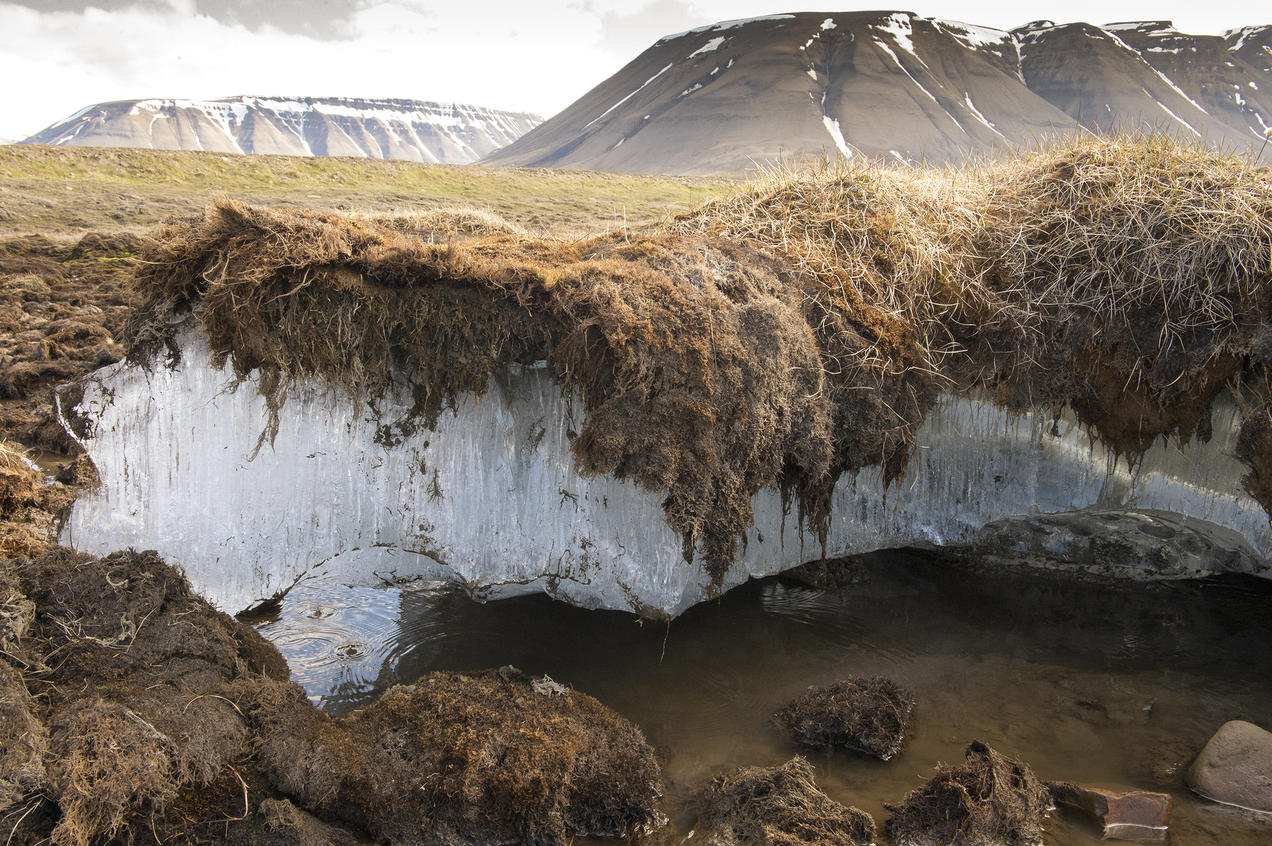 Permafrost Melting In The Arctic Region Of Svalbard Norway