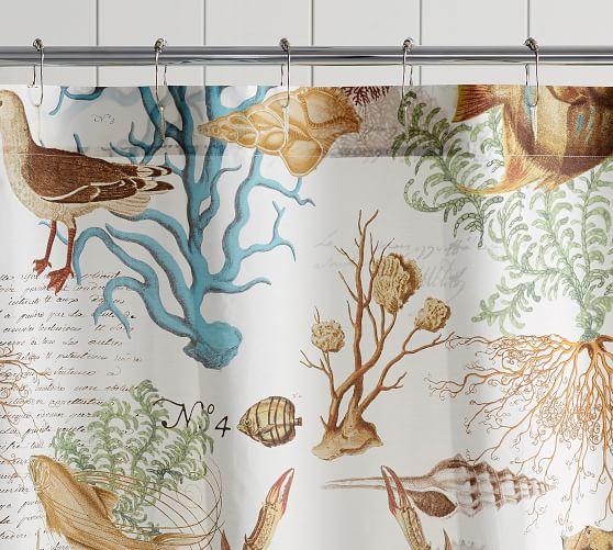 sea life organic shower curtain